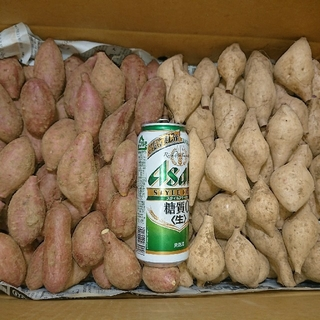 種子島ゴールド&安納芋 詰め合わせ SSサイズ 10キロ(野菜)