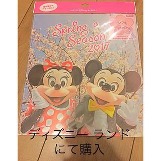 Disney - レア ディズニーリゾート 色紙 一枚