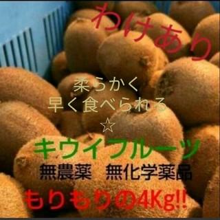 ☆最終セール☆ キウイフルーツ 4kg 有機栽培 訳あり