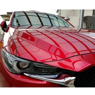 SGX01 ガラス系コート ヌル艶、汚れ落とし、防汚 バリアスコートの代替に(洗車・リペア用品)