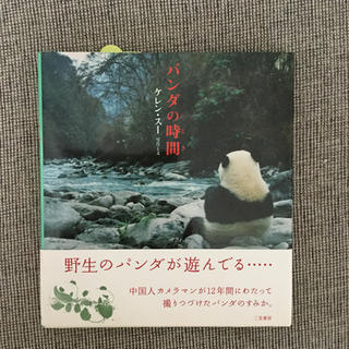 パンダの時間(ノンフィクション/教養)