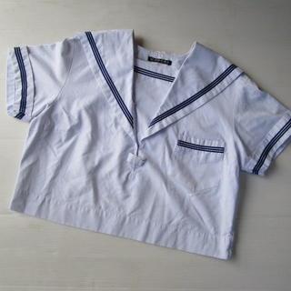 大きいサイズ 制服 LLサイズ a04(その他)