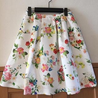 チェスティ(Chesty)の未使用❤️チェスティ❤️小鳥さん花柄スカート(ひざ丈スカート)