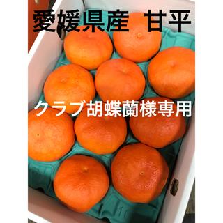 愛媛県産  甘平  かんぺい