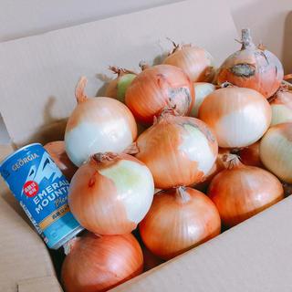 かんしゃ様専用出品   訳あり淡路島たまねぎ10kg大小混合サイズ送料無料(野菜)