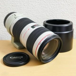 Canon EF70-200mm F4L