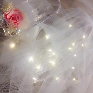 【即購入OK】結婚式に最適な新品ソフトチュールとLEDイルミネーションセット⭐︎(蛍光灯/電球)