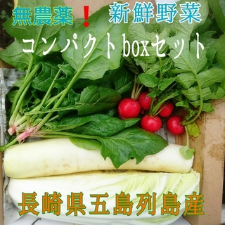 無農薬❗新鮮野菜セット(コンパクトbox) 長崎県五島列島産(野菜)