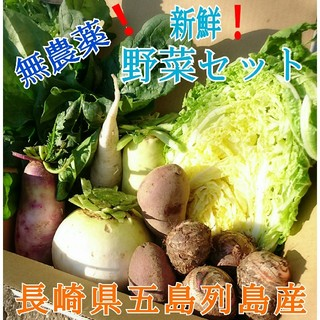無農薬❗新鮮野菜セット(70サイズ) 長崎県五島列島産❗(野菜)