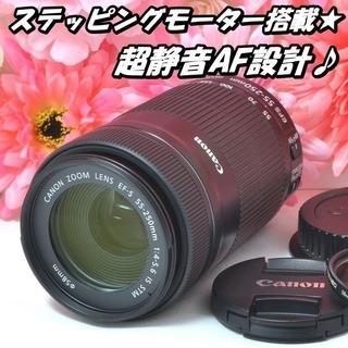 キヤノン(Canon)の★高画質&安心手ブレ補正★ Canon EF-S 55-250mm IS STM(レンズ(ズーム))