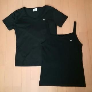 LACOSTE - ✨美品✨【LACOSTE】VネックTシャツ & キャミソール