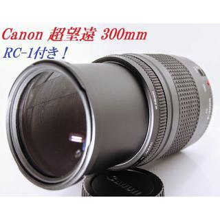 キヤノン(Canon)の♦️フレームの変化感じて下さい 5!Canon EF 75-300 ㎜ Ⅲ♦️(レンズ(ズーム))