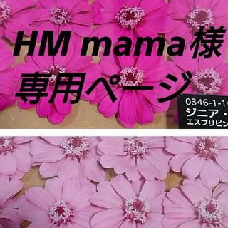 HK mama様専用機  大地農園ジニア 小分け(プリザーブドフラワー)