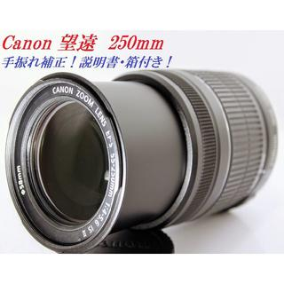 キヤノン(Canon)の♦️身軽な一人旅のお供にCanon EF-S 55-250mm IS Ⅱ♦️(レンズ(ズーム))