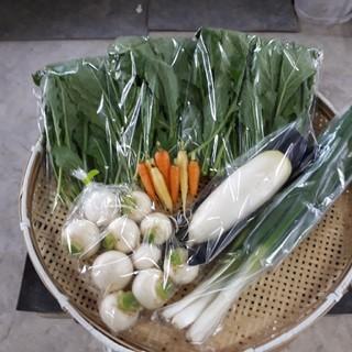 詰め合わせセット60サイズ(野菜)