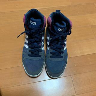 アディダス(adidas)のアディダス ハイカット(スニーカー)