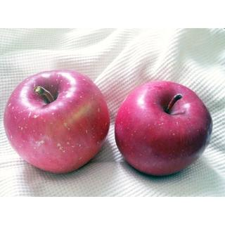 taretaotao様専用ページサンふじ10キロ ☆青森りんご 家庭用送料込み (フルーツ)