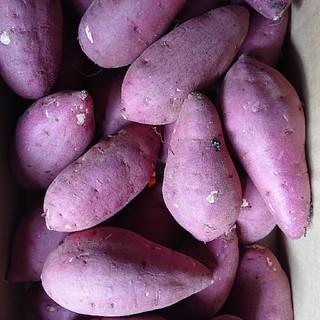 大分県産さつまいも(甘太くん)M5キロ(野菜)