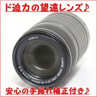 キヤノン(Canon)の★ド迫力の望遠&手振補正! ★CANON EF-S 55-250mm IS Ⅱ(レンズ(ズーム))
