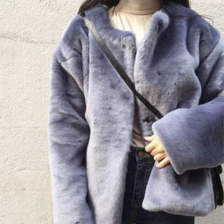 オオトロ(OHOTORO)のOHOTORO 「MONT BLANC COAT」sora(毛皮/ファーコート)
