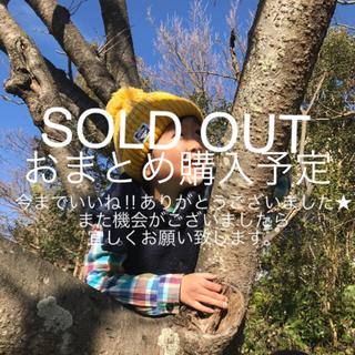 サニーランドスケープ(SunnyLandscape)のsunny landscape  ★ ベビーキッズTシャツ 90センチ(Tシャツ)