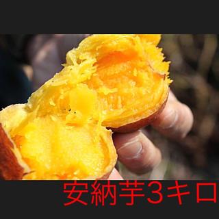 安納芋3キロ(鹿児島県種子島産)即購入ok(野菜)