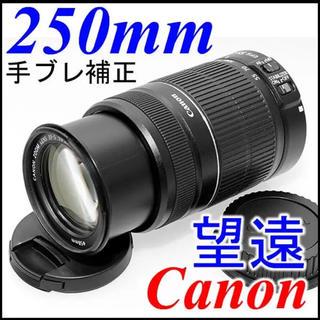 キヤノン(Canon)の手ブレ補正 250mm 望遠レンズ EF-S 55-250mm IS EOS(レンズ(ズーム))