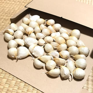 青森県南産 バラにんにく 400g 送料無料 今年度分終盤在庫残り僅か(野菜)