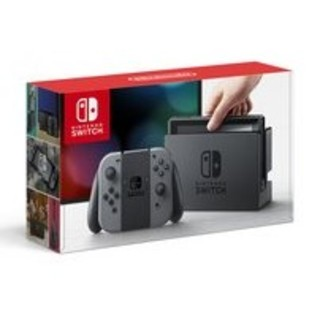 ニンテンドースイッチ(Nintendo Switch)の任天堂Switch グレー(家庭用ゲーム本体)
