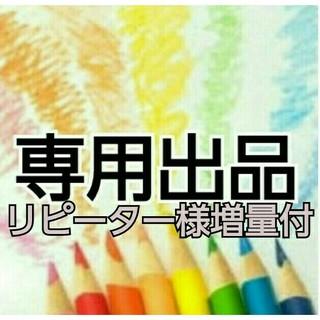 リピーター🌈ミッキー様専用 20pack (ダイエット食品)