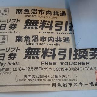 南魚沼市内共通 リフト1日券 2枚セット(ウィンタースポーツ)