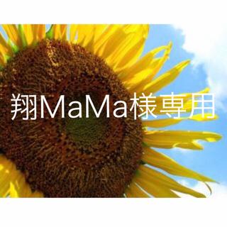 翔MaMa様専用(その他)