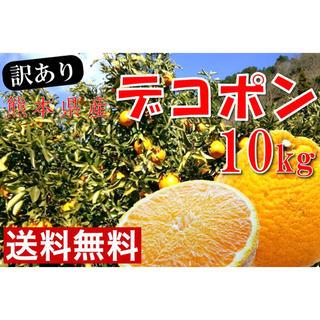 熊本県河内産 デコポン 10kg 【全国送料無料】訳あり(フルーツ)