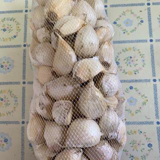 青森県産にんにく バラ詰 1キロ(野菜)