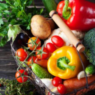 長崎採れたて無農薬野菜 12品メガ盛り野菜セット 新鮮朝採れ直送 送料無料(野菜)