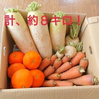 野菜詰め合わせ 大根 人参 かぶ    みかん(野菜)