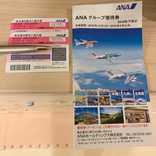 エーエヌエー(ゼンニッポンクウユ)(ANA(全日本空輸))のANA 株主優待券2枚、グループ優待券(航空券)