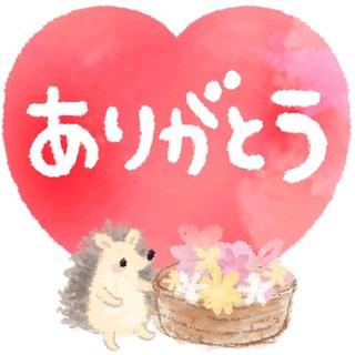 阿蘇コシヒカリ★玄米6合(米/穀物)