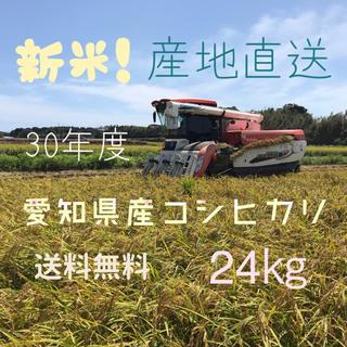 愛知県産コシヒカリ 小分けなし 玄米24㎏(米/穀物)