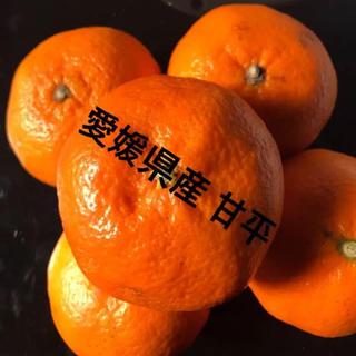 評価リピ率100点‼︎愛媛県産高級柑橘★厳選家庭用甘平☆甘さレベル5!5kg(フルーツ)