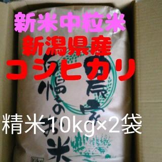 【残りわずか】30年産新潟コシヒカリ中粒米10キロ精米×2袋(米/穀物)