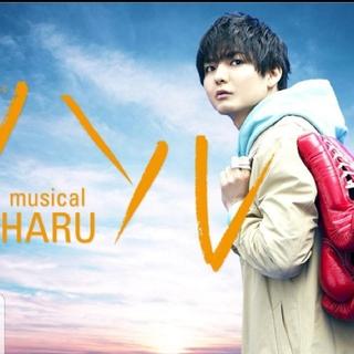 ヘイセイジャンプ(Hey! Say! JUMP)の薮宏太 ミュージカル 【ハル】4/12 13時半~(ミュージカル)