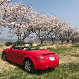 アウディ(AUDI)のアウディTT(車検2年間付き)(車種別パーツ)
