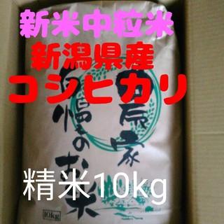 【残りわずか】30年産新潟コシヒカリ中粒米10キロ精米(米/穀物)