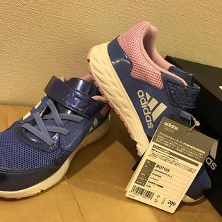 adidas - 20cm 新品未使用 アディダス スニーカー  女の子 子供 靴 ピンク