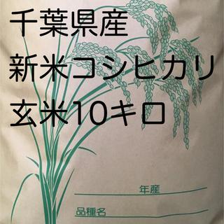 コシヒカリ玄米10キロ(米/穀物)