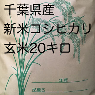 コシヒカリ玄米20キロ(米/穀物)