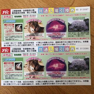 上野動物園  入場引換券  2枚(動物園)
