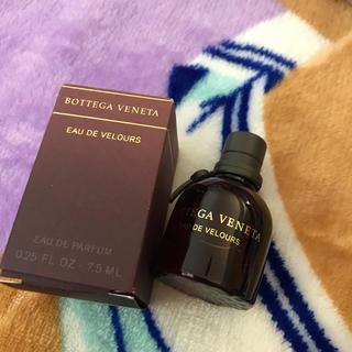 ボッテガヴェネタ(Bottega Veneta)の新品ボッテガ 香水 オードベロア(香水(女性用))