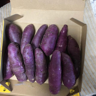 紫芋ー1.1キロ(野菜)